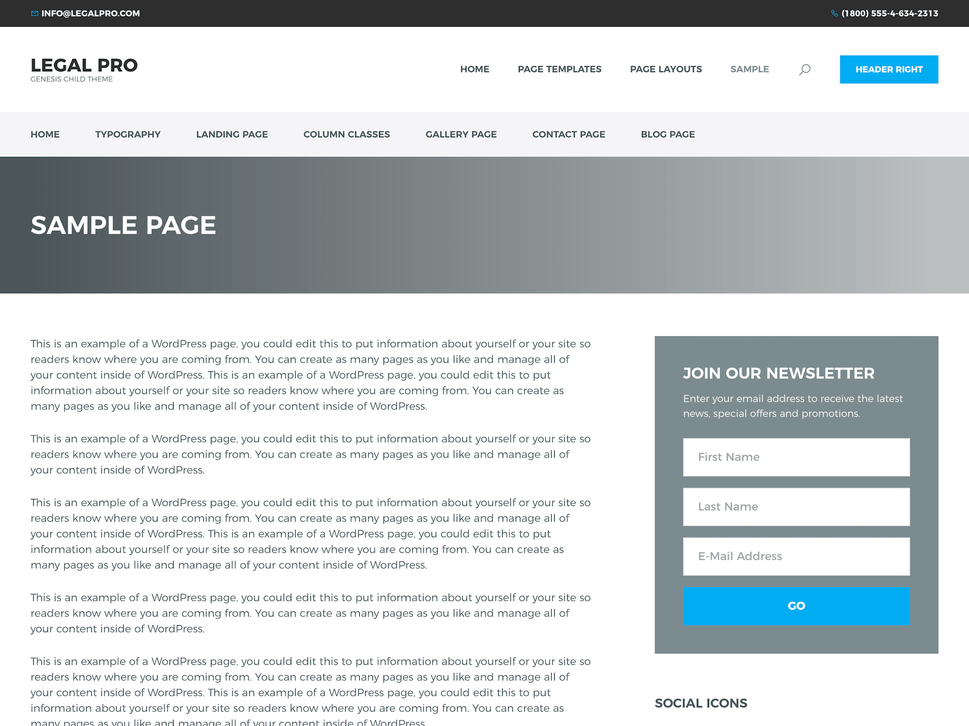 Sample of lawyer WordPress theme
